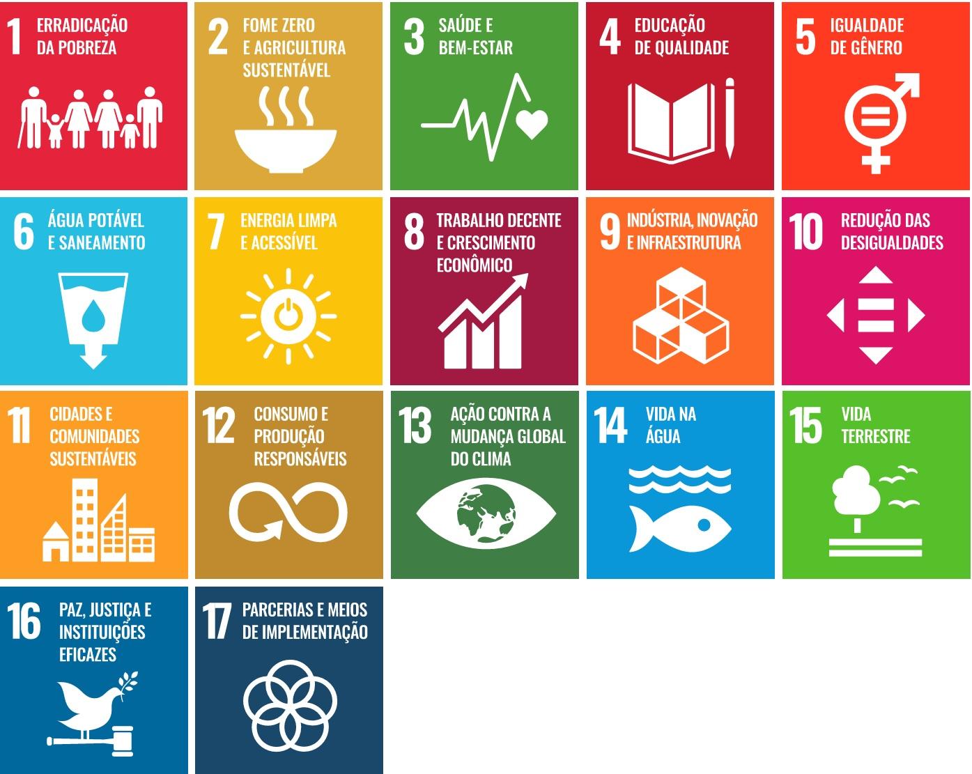 3. Imagem Agenda 2030